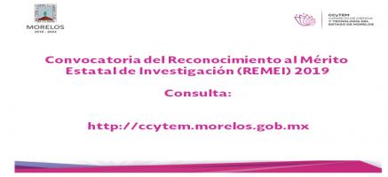 Consulta la convocatoria REMI 2019